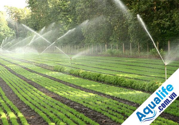 Hệ thống lọc nước sông cho tưới cây