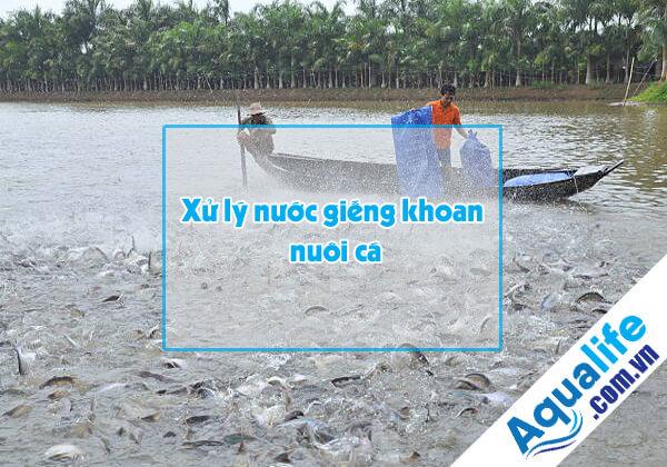 lọc nước giếng khoan nuôi cá